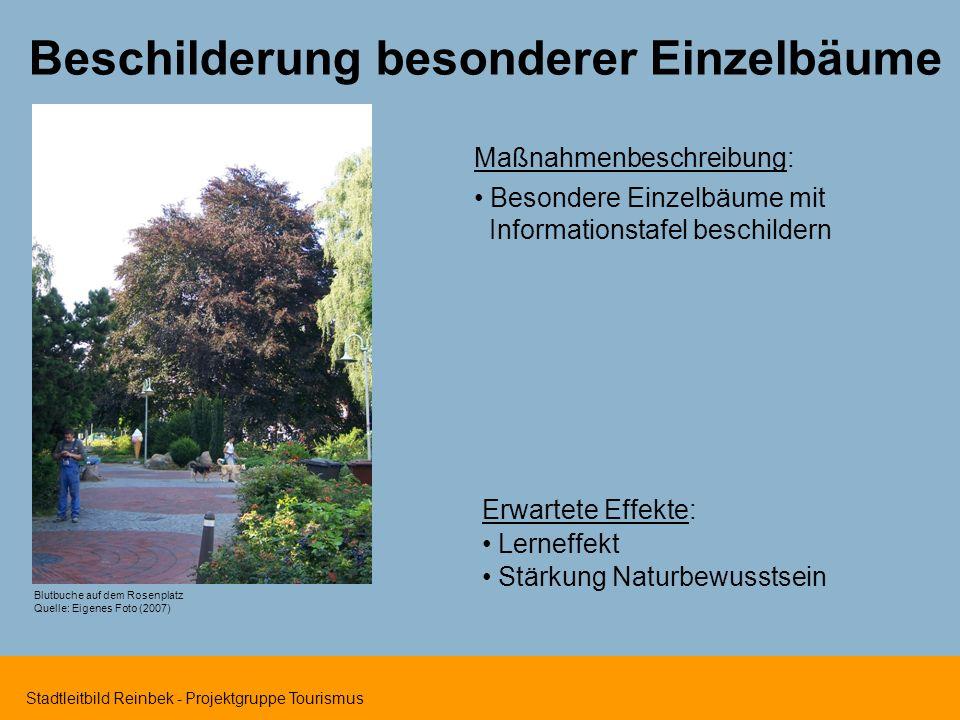 Stadtleitbild Reinbek - Projektgruppe Tourismus Beschilderung besonderer Einzelbäume Maßnahmenbeschreibung: Besondere Einzelbäume mit Informationstafe