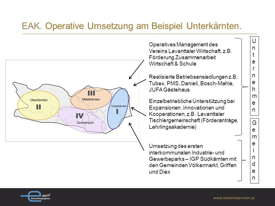 EAK.Operative Umsetzung am Beispiel Unterkärnten.