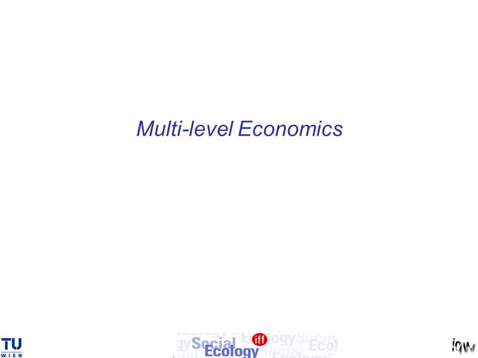 Multi-level Economics