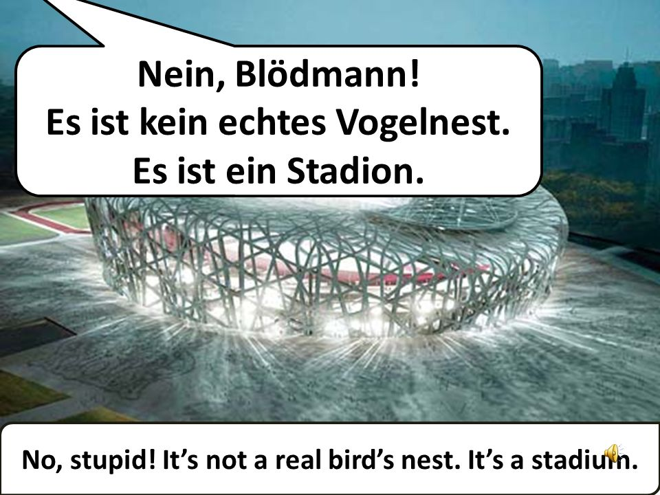 Wow! Wie viele Vögel können darin leben? Wow! How many birds can live in there?