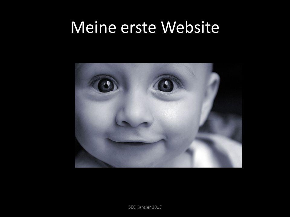 Meine erste Website SEOKanzler 2013