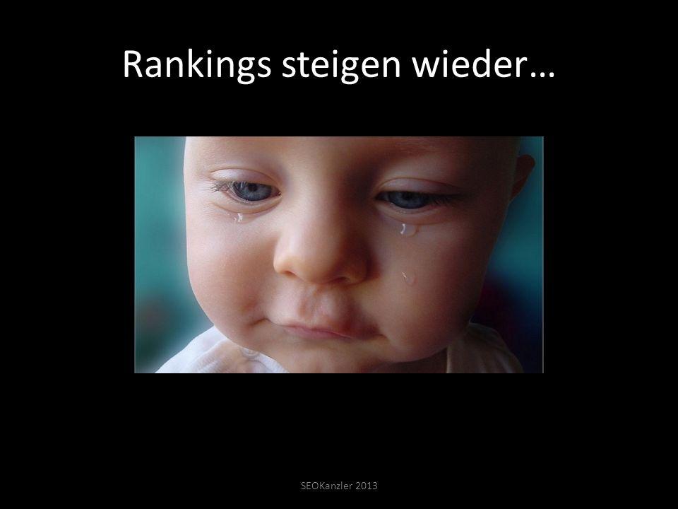 Rankings steigen wieder… SEOKanzler 2013 Rankings steigen wieder hoch…