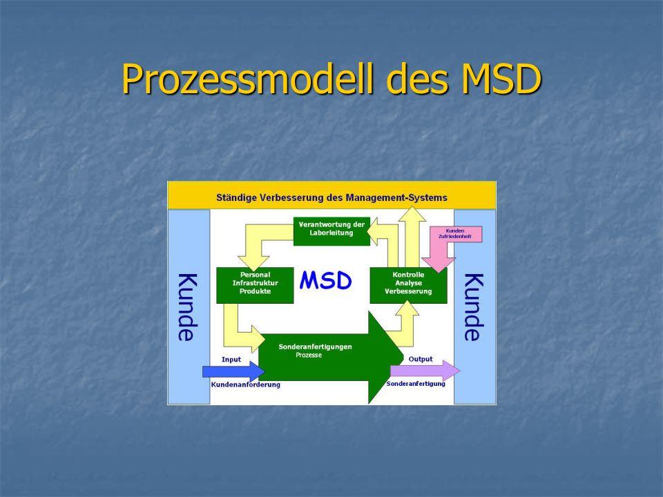 Prozessmodell des MSD
