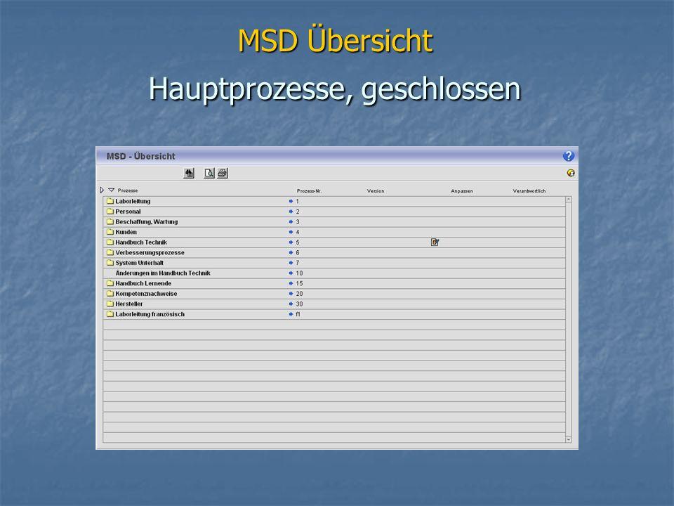 MSD Übersicht Hauptprozesse, geschlossen