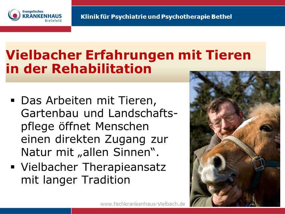 Klinik für Psychiatrie und Psychotherapie Bethel www.Fachkrankenhaus-Vielbach.de49 Vielbacher Erfahrungen mit Tieren in der Rehabilitation Das Arbeite