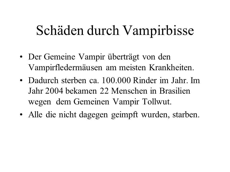 Mythen und Legenden Menschen glaubten, dass sich Vampire in Wölfe oder Fledermäuse verwandeln konnten. Wurden Menschen gebissen, wurden sie auch zu Va
