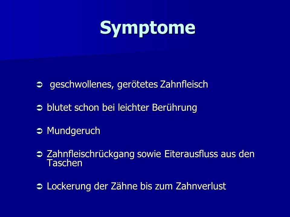 2. Parodontitis Symptome Symptome Verlauf Verlauf Therapie Therapie AM-Therapie AM-Therapie