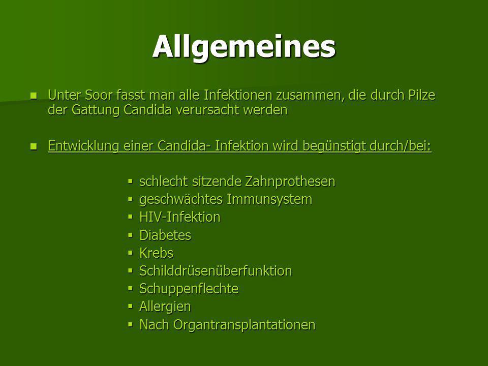 6. Candidosen = Soor, Mundsoor, Mundpilz Allgemeines Allgemeines Entstehung/Symptome Entstehung/Symptome Therapie Therapie Behandlung Behandlung