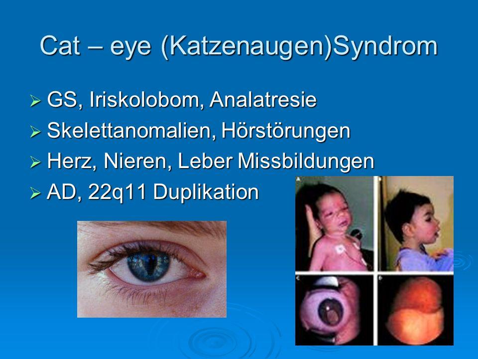 Cat – eye (Katzenaugen)Syndrom GS, Iriskolobom, Analatresie GS, Iriskolobom, Analatresie Skelettanomalien, Hörstörungen Skelettanomalien, Hörstörungen