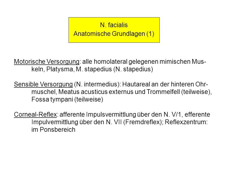 N. facialis Anatomische Grundlagen (1) Motorische Versorgung: alle homolateral gelegenen mimischen Mus- keln, Platysma, M. stapedius (N. stapedius) Se
