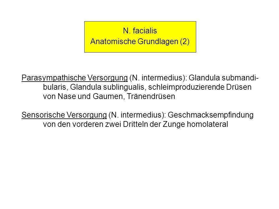 N. facialis Anatomische Grundlagen (2) Parasympathische Versorgung (N. intermedius): Glandula submandi- bularis, Glandula sublingualis, schleimproduzi