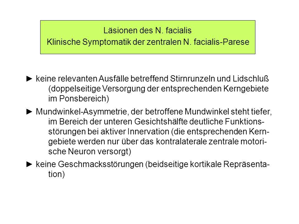 Läsionen des N. facialis Klinische Symptomatik der zentralen N. facialis-Parese keine relevanten Ausfälle betreffend Stirnrunzeln und Lidschluß (doppe