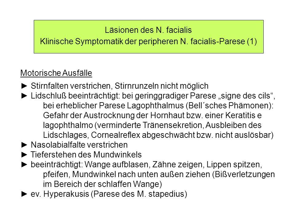 Läsionen des N. facialis Klinische Symptomatik der peripheren N. facialis-Parese (1) Motorische Ausfälle Stirnfalten verstrichen, Stirnrunzeln nicht m