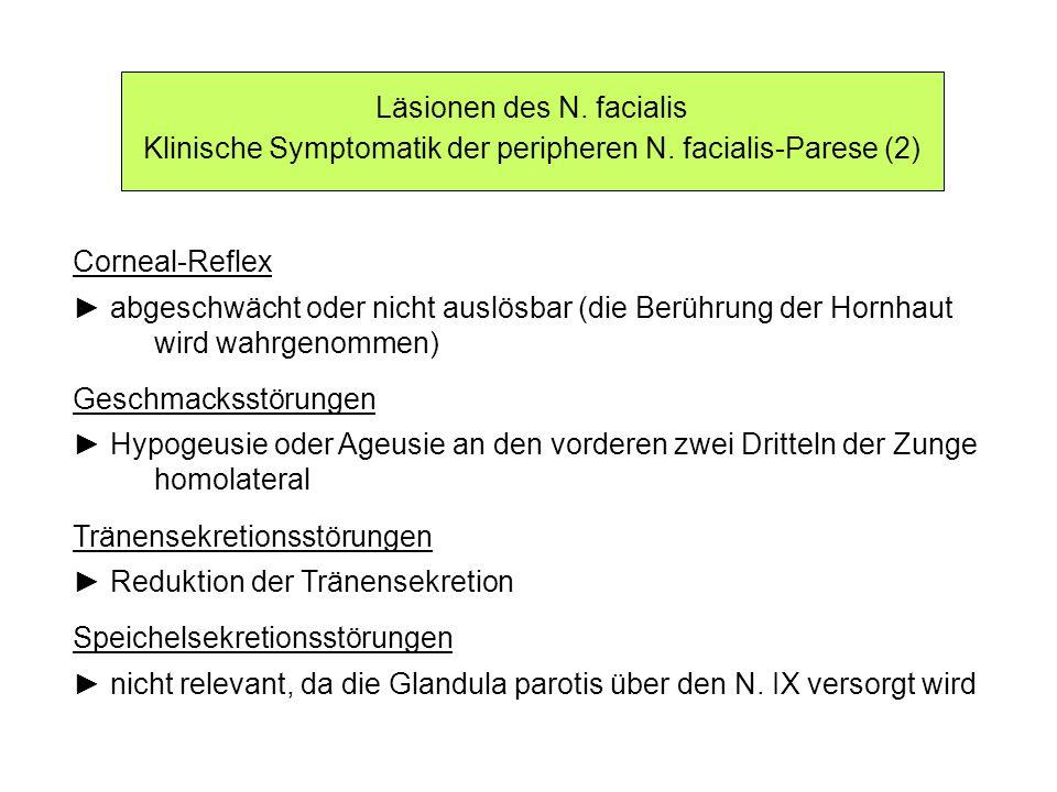 Läsionen des N. facialis Klinische Symptomatik der peripheren N. facialis-Parese (2) Corneal-Reflex abgeschwächt oder nicht auslösbar (die Berührung d