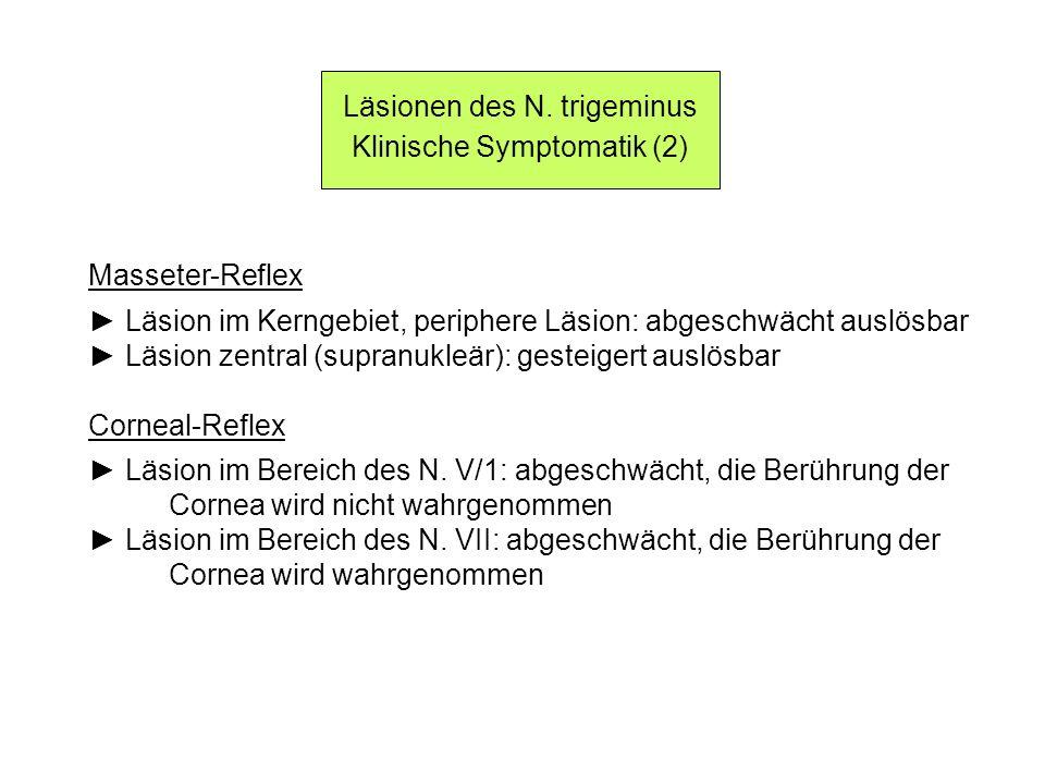 Läsionen des N. trigeminus Klinische Symptomatik (2) Masseter-Reflex Läsion im Kerngebiet, periphere Läsion: abgeschwächt auslösbar Läsion zentral (su
