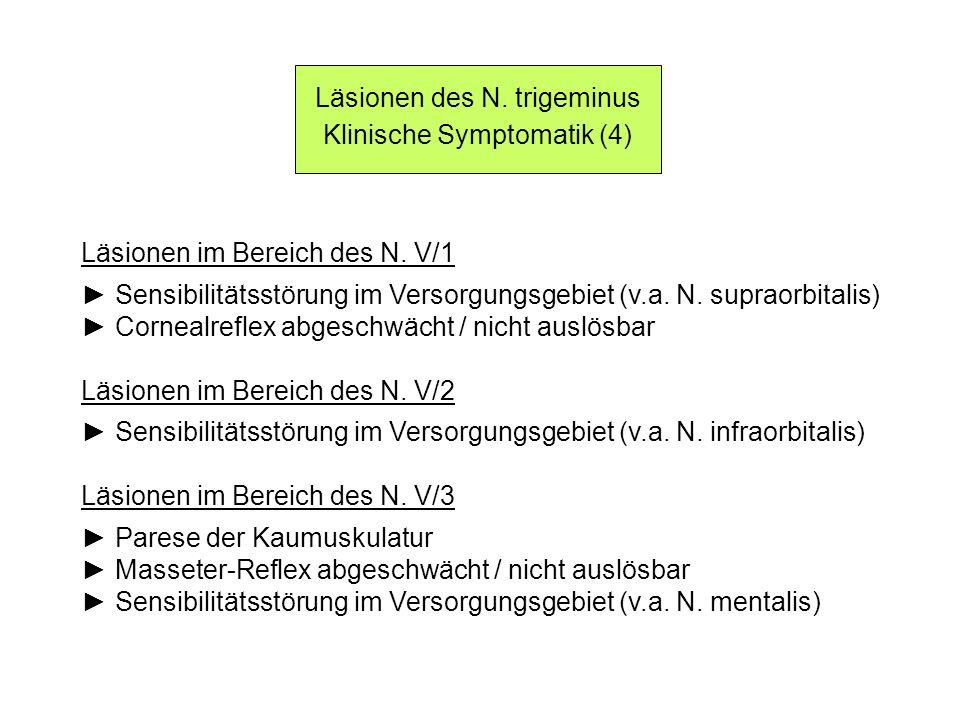 Läsionen des N. trigeminus Klinische Symptomatik (4) Läsionen im Bereich des N. V/1 Sensibilitätsstörung im Versorgungsgebiet (v.a. N. supraorbitalis)