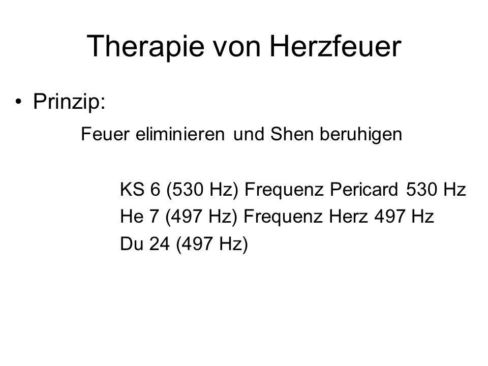Therapie von Herzfeuer Prinzip: Feuer eliminieren und Shen beruhigen KS 6 (530 Hz) Frequenz Pericard 530 Hz He 7 (497 Hz) Frequenz Herz 497 Hz Du 24 (