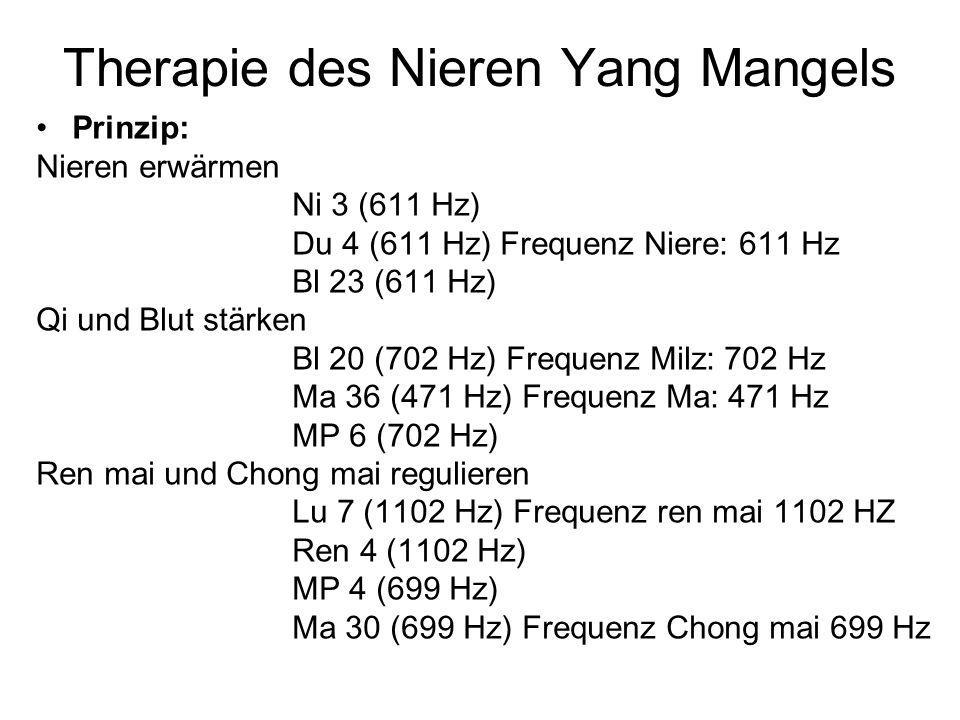 Therapie des Nieren Yang Mangels Prinzip: Nieren erwärmen Ni 3 (611 Hz) Du 4 (611 Hz) Frequenz Niere: 611 Hz Bl 23 (611 Hz) Qi und Blut stärken Bl 20