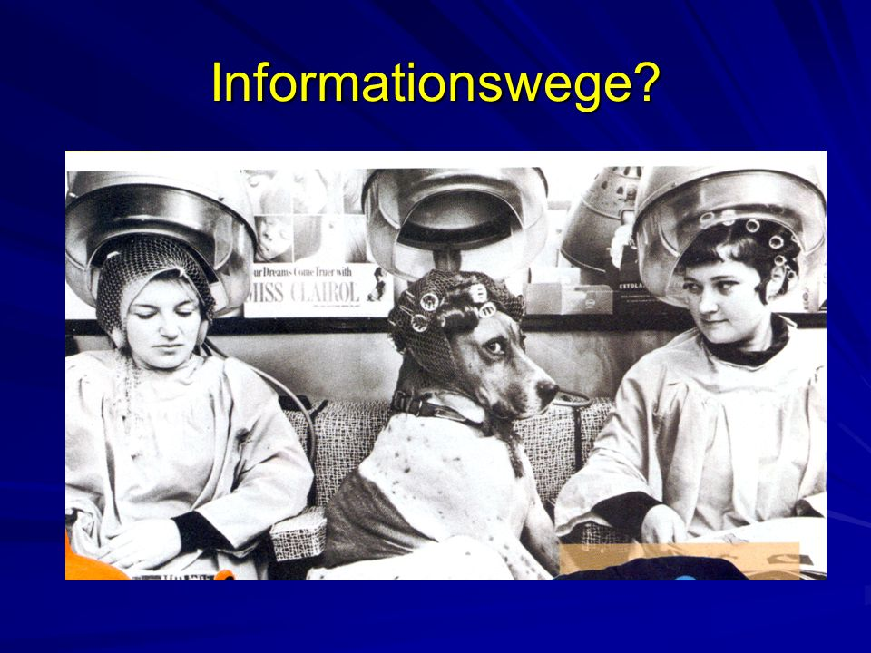 Informationswege?