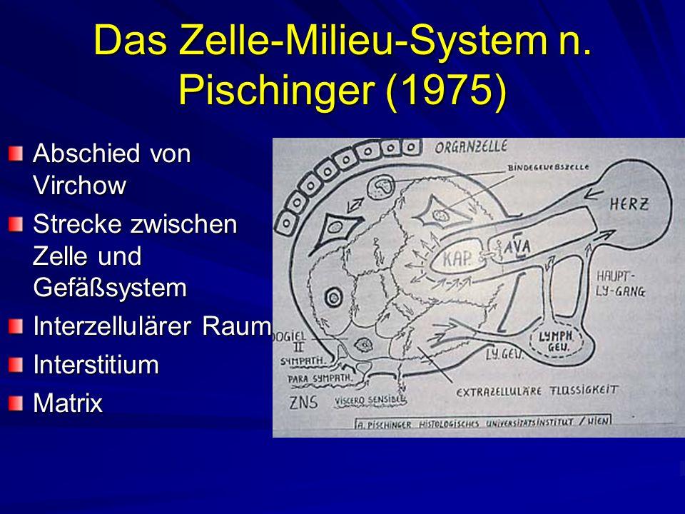 Das Zelle-Milieu-System n.