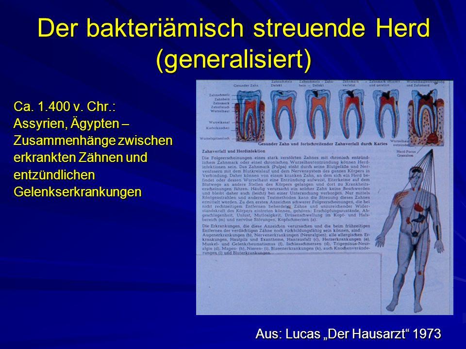 Der bakteriämisch streuende Herd (generalisiert) Aus: Lucas Der Hausarzt 1973 Ca.