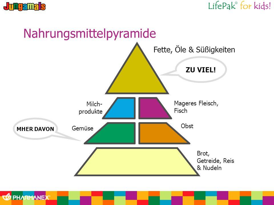 Nahrungsmittelpyramide Fette, Öle & Süßigkeiten ZU VIEL! Mageres Fleisch, Fisch Obst Brot, Getreide, Reis & Nudeln Milch- produkte Gemüse MHER DAVON