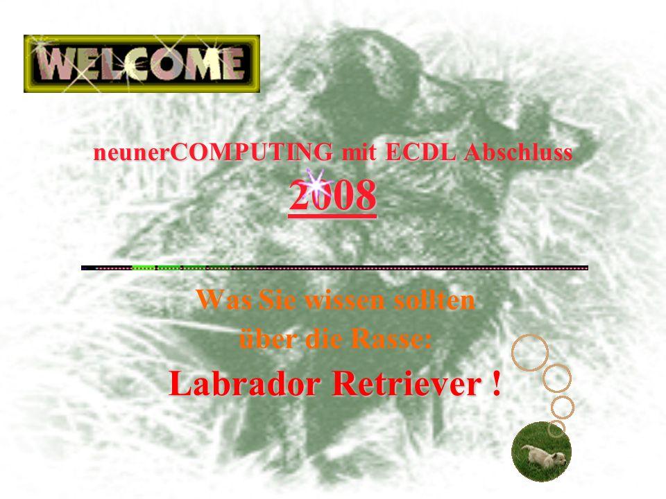 neunerCOMPUTINGECDL 2008 neunerCOMPUTING mit ECDL Abschluss 2008 Was Sie wissen sollten über die Rasse: LabradorRetriever Labrador Retriever !