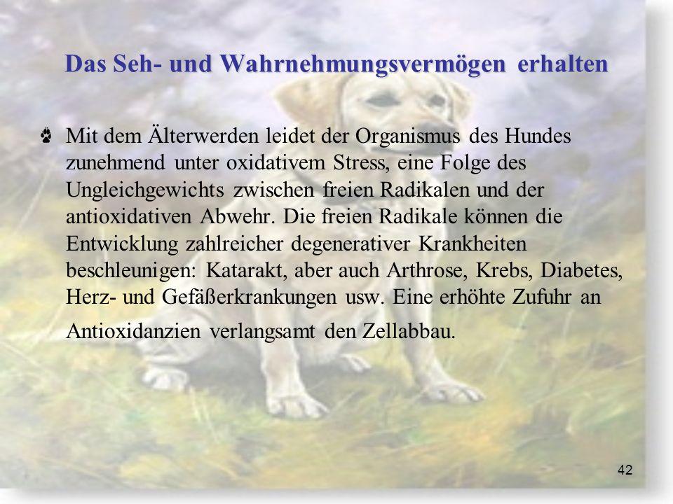 42 Das Seh- und Wahrnehmungsvermögen erhalten Mit dem Älterwerden leidet der Organismus des Hundes zunehmend unter oxidativem Stress, eine Folge des Ungleichgewichts zwischen freien Radikalen und der antioxidativen Abwehr.