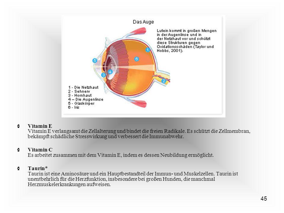 45 Vitamin E Vitamin E verlangsamt die Zellalterung und bindet die freien Radikale.
