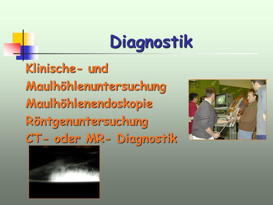 Diagnostik Klinische- und MaulhöhlenuntersuchungMaulhöhlenendoskopieRöntgenuntersuchung CT- oder MR- Diagnostik