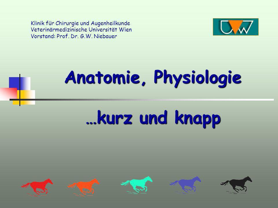 Anatomie, Physiologie …kurz und knapp Klinik für Chirurgie und Augenheilkunde Veterinärmedizinische Universität Wien Vorstand: Prof. Dr. G.W. Niebauer