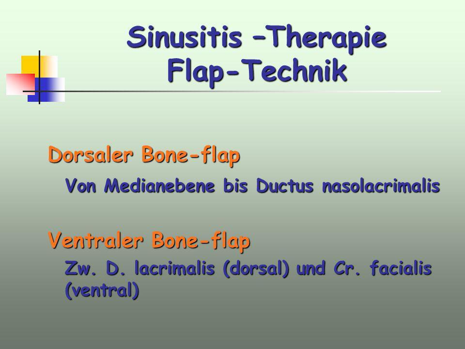 Sinusitis –Therapie Flap-Technik Dorsaler Bone-flap Von Medianebene bis Ductus nasolacrimalis Ventraler Bone-flap Zw. D. lacrimalis (dorsal) und Cr. f