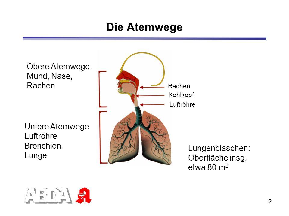 23 Peak-Flow-Meter Misst Zustand der Bronchien Individuellen Bestwert in symptomarmer Phase bestimmen Messwerte in Asthmatagebuch eintragen Konsequenzen nach Ampelschema