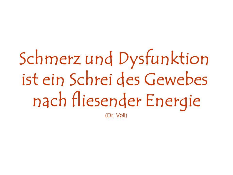 Schmerz und Dysfunktion ist ein Schrei des Gewebes nach fliesender Energie (Dr. Voll)