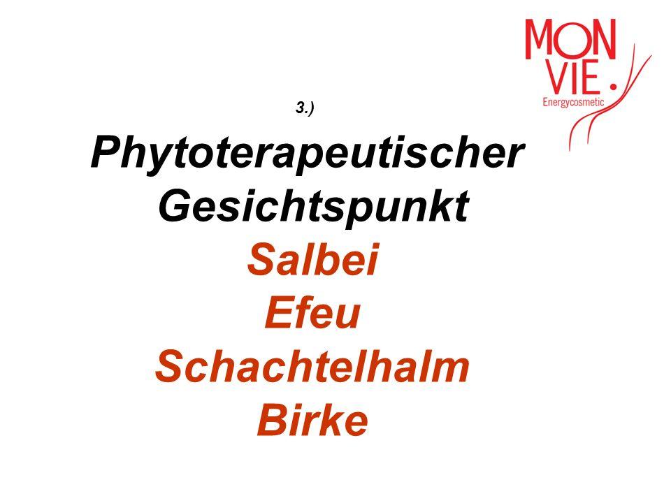 3.) Phytoterapeutischer Gesichtspunkt Salbei Efeu Schachtelhalm Birke