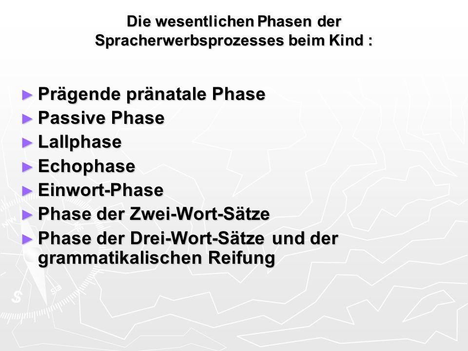 Die wesentlichen Phasen der Spracherwerbsprozesses beim Kind : Prägende pränatale Phase Prägende pränatale Phase Passive Phase Passive Phase Lallphase