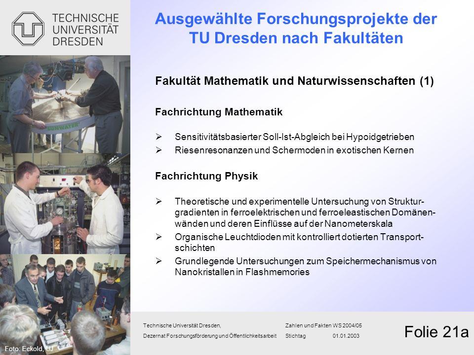 Ausgewählte Forschungsprojekte der TU Dresden nach Fakultäten Fakultät Mathematik und Naturwissenschaften (1) Fachrichtung Mathematik Sensitivitätsbas