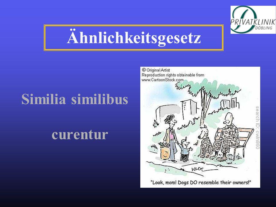 Similia similibus curentur Ähnlichkeitsgesetz