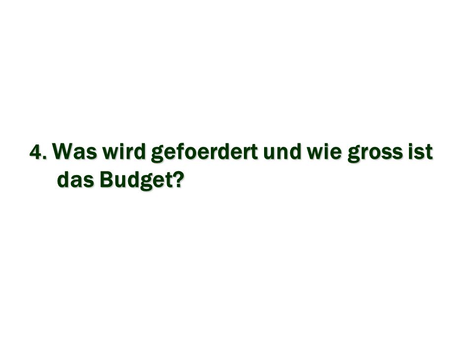 4. Was wird gefoerdert und wie gross ist das Budget?