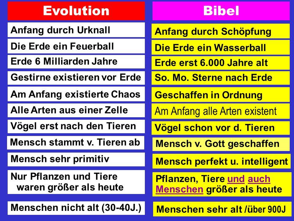 Die fundamentalen Gegensätze zwischen Bibel und Wissenschaft