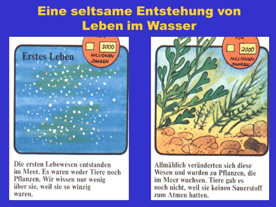 Aus meinem Mitschreibheft in Naturgeschichte (1955/56) Das Wasser ist das wichtigste und gesündeste Getränk für den Menschen. Es ist neben der Luft ei
