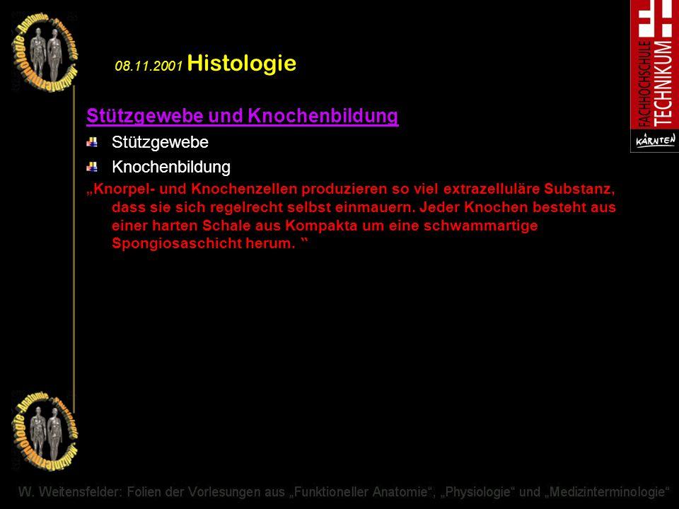 08.11.2001 Histologie Stützgewebe und Knochenbildung Stützgewebe Knochenbildung Knorpel- und Knochenzellen produzieren so viel extrazelluläre Substanz