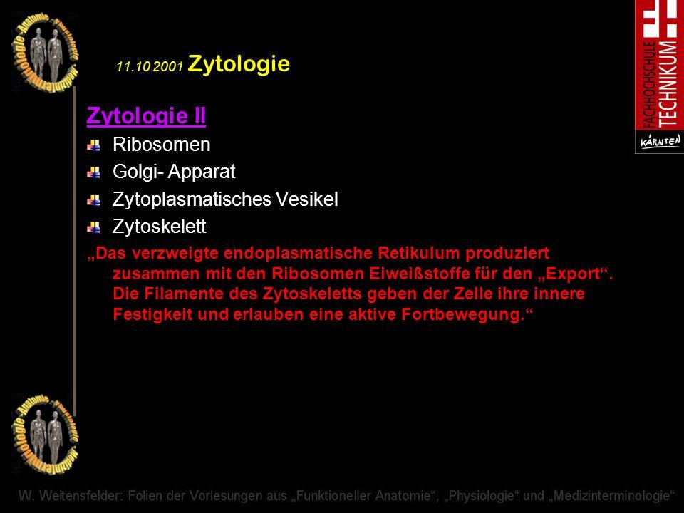 11.10 2001 Zytologie Zytologie II Ribosomen Golgi- Apparat Zytoplasmatisches Vesikel Zytoskelett Das verzweigte endoplasmatische Retikulum produziert