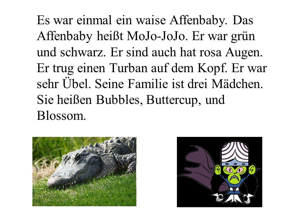 Es war einmal ein waise Affenbaby. Das Affenbaby heißt MoJo-JoJo.
