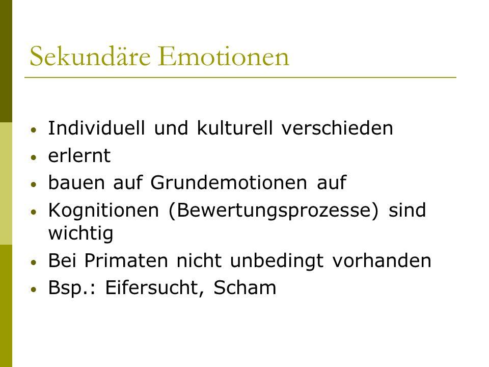 Sekundäre Emotionen Individuell und kulturell verschieden erlernt bauen auf Grundemotionen auf Kognitionen (Bewertungsprozesse) sind wichtig Bei Prima