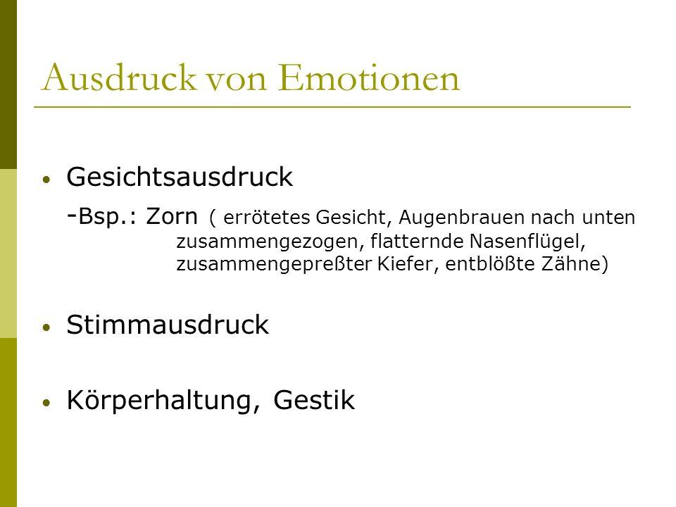 Ausdruck von Emotionen Gesichtsausdruck - Bsp.: Zorn ( errötetes Gesicht, Augenbrauen nach unten zusammengezogen, flatternde Nasenflügel, zusammengepr