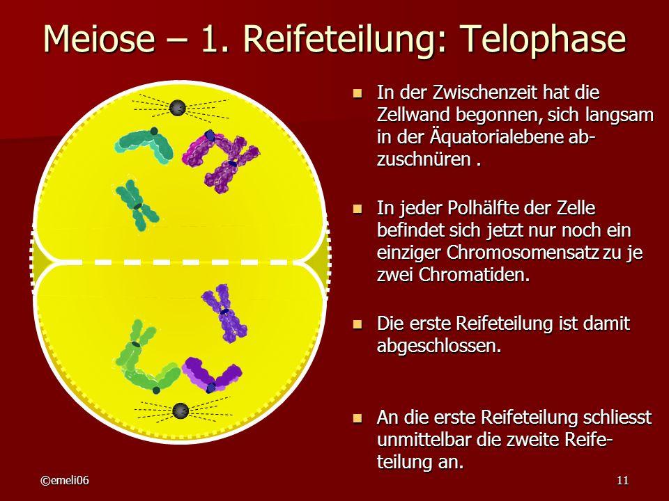 ©emeli0611 Meiose – 1. Reifeteilung: Telophase In der Zwischenzeit hat die Zellwand begonnen, sich langsam in der Äquatorialebene ab- zuschnüren. In d
