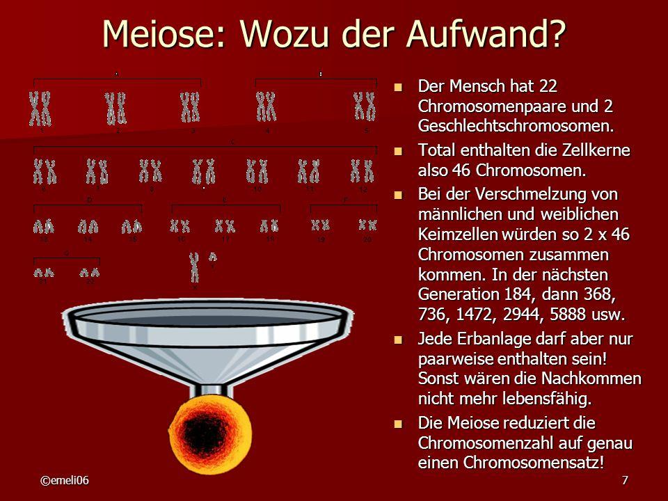 ©emeli067 Meiose: Wozu der Aufwand? Der Mensch hat 22 Chromosomenpaare und 2 Geschlechtschromosomen. Der Mensch hat 22 Chromosomenpaare und 2 Geschlec