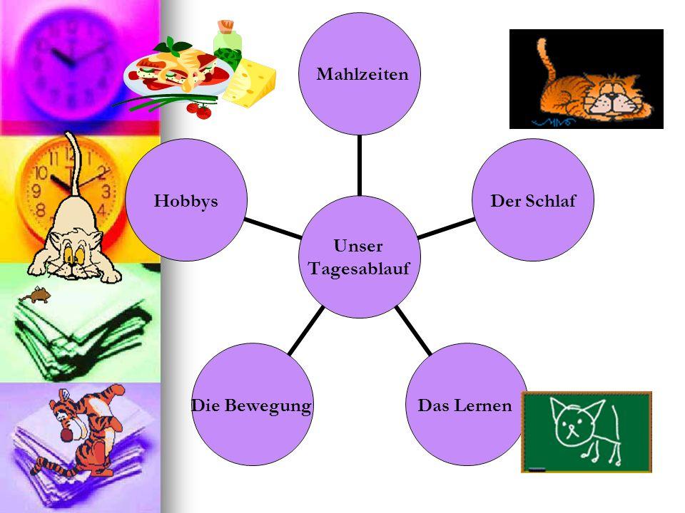 Unser Tagesablauf Mahlzeiten Der Schlaf Das Lernen Die Bewegung Hobbys