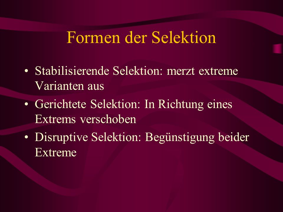 Formen der Selektion Stabilisierende Selektion: merzt extreme Varianten aus Gerichtete Selektion: In Richtung eines Extrems verschoben Disruptive Sele
